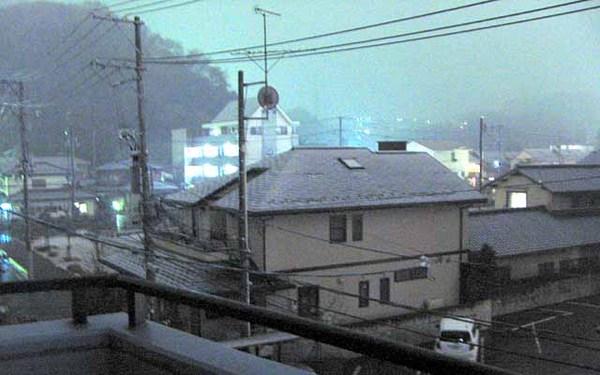 Yuki2010