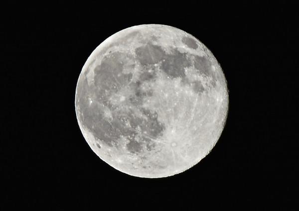 Moon613